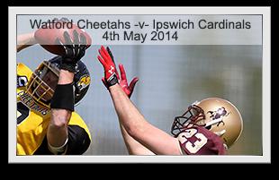 Cheetahs -v- Cardinals